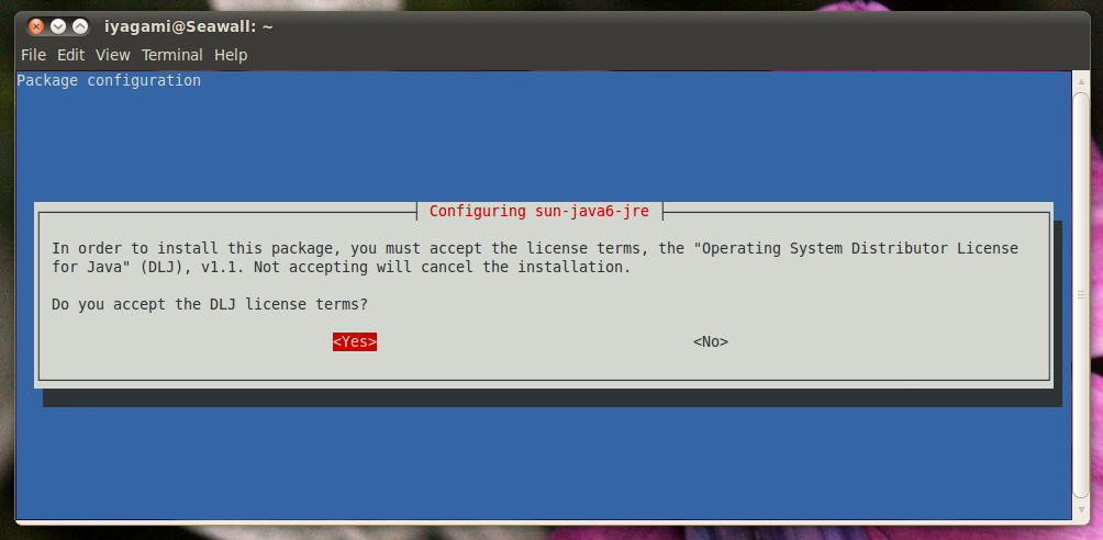 DoD CAC Setup for Ubuntu 10 4 LTS Linux (32-bit x86)